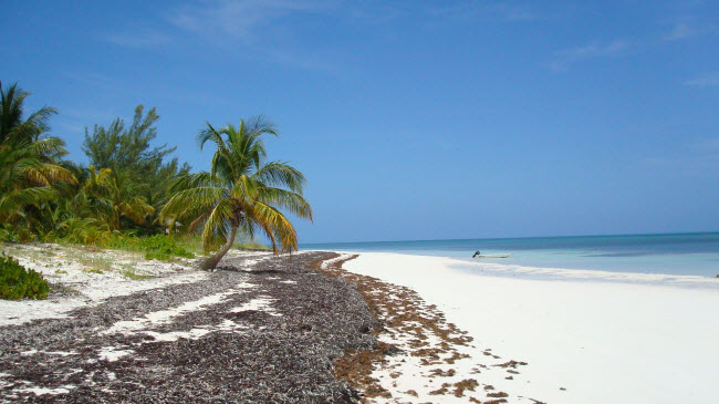 Holidays In The Bahamas Things You Need To Know Before You Go