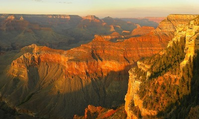 An Abundance Of Sightseeing Tours Available At The Grand Canyon