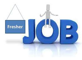 5 Industries In Delhi That Readily Accept Freshers