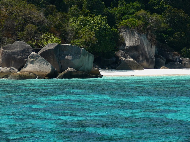 The Similans