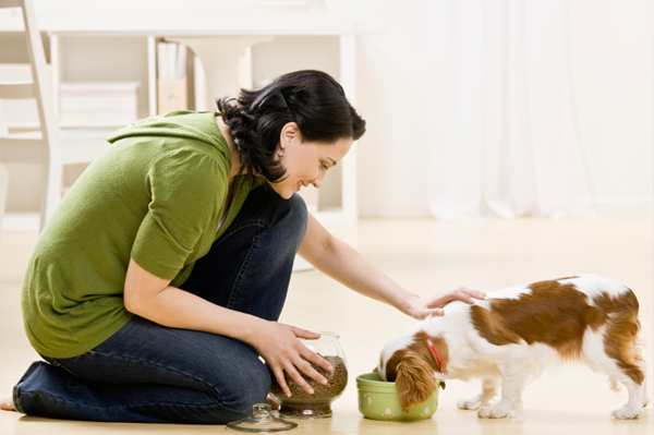 woman-feeding-dog-food