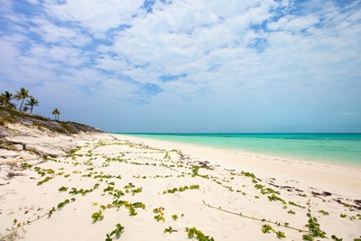 Turks and Caicos Islands - The Perfect Honeymoon Destination