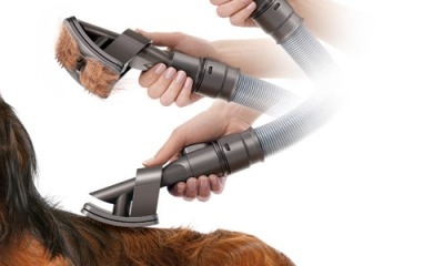 Perfect Vacuums For Pet Hair Removal