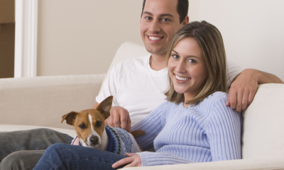 Finding The Best Insurance For You and Your Pet
