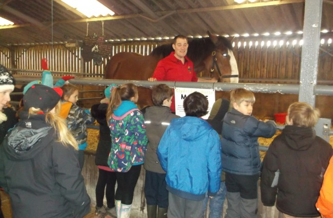 Top Reasons Farm Parks Make Great School Trips