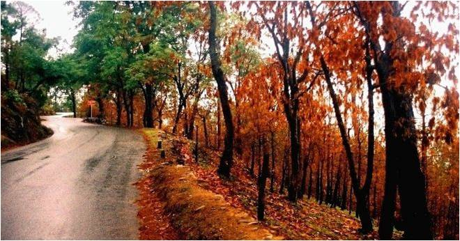 The Top 3 Must-visit Famous Places In Ranikhet