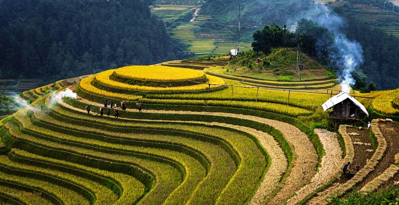 Many Beautiful Landscapes In Vietnam Ranked In Top Of The World