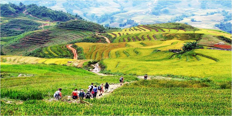 Trekking Travel and Tours In Vietnam