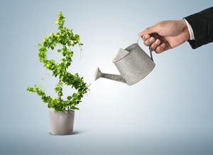 Why Should You Use A Financial Advisory Company