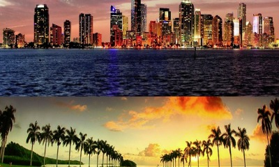 Guided Sightseeing Tours In Miami