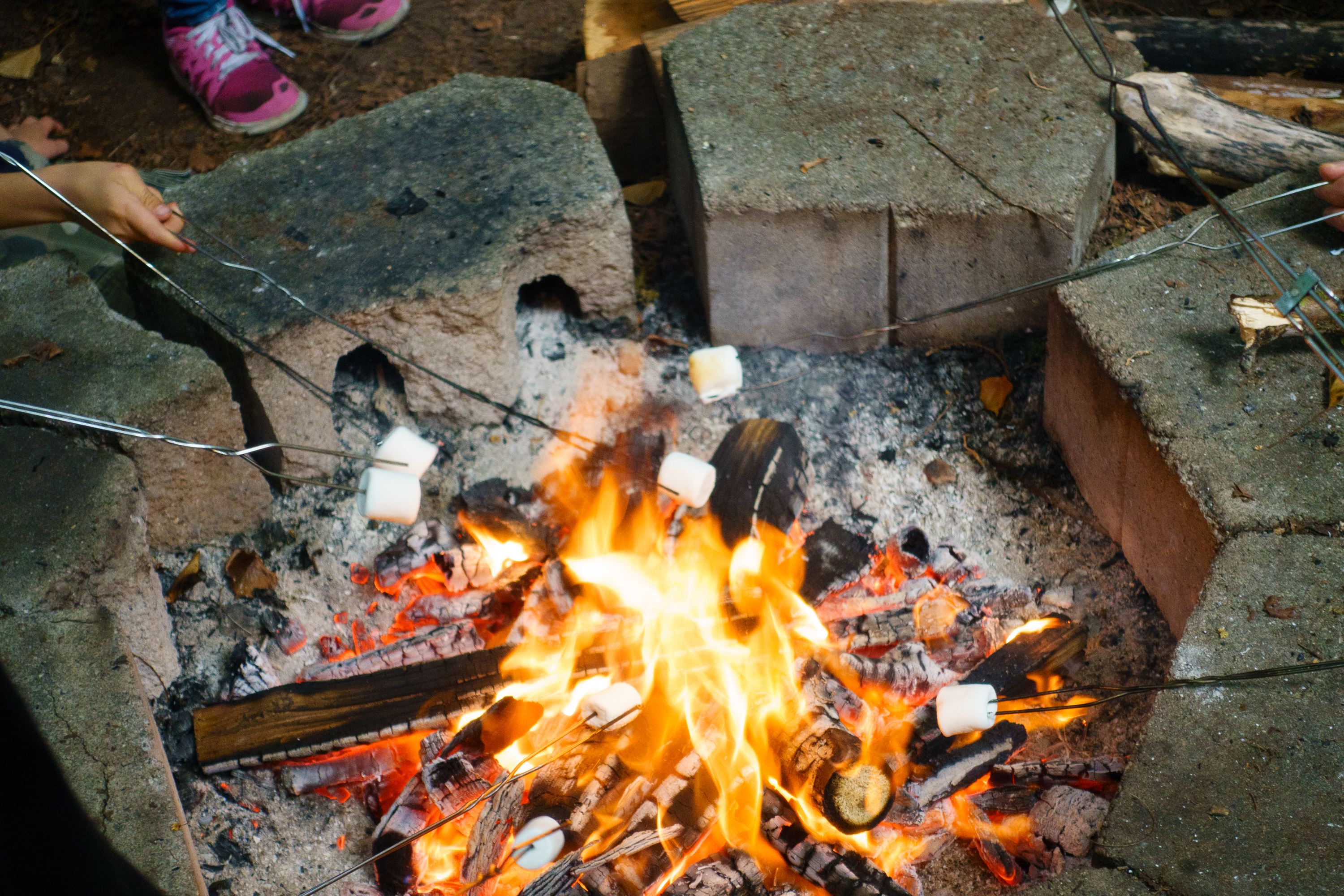 5 Tasty Camping Foods That Anybody Can Make