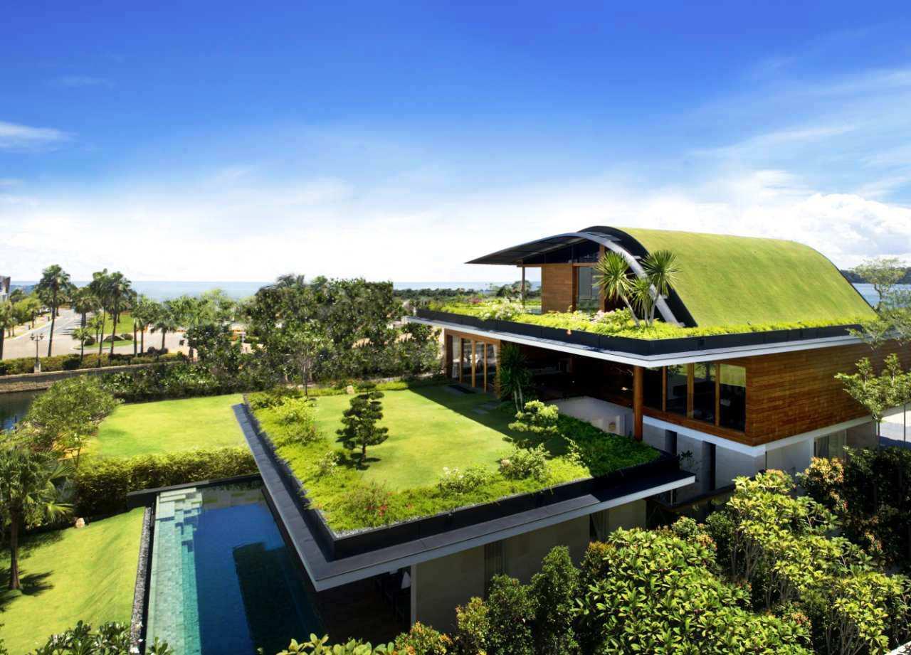 Eco-Friendly-Home-Improvement-Ideas