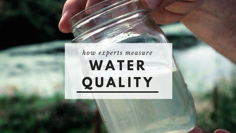 how experts measure water quality
