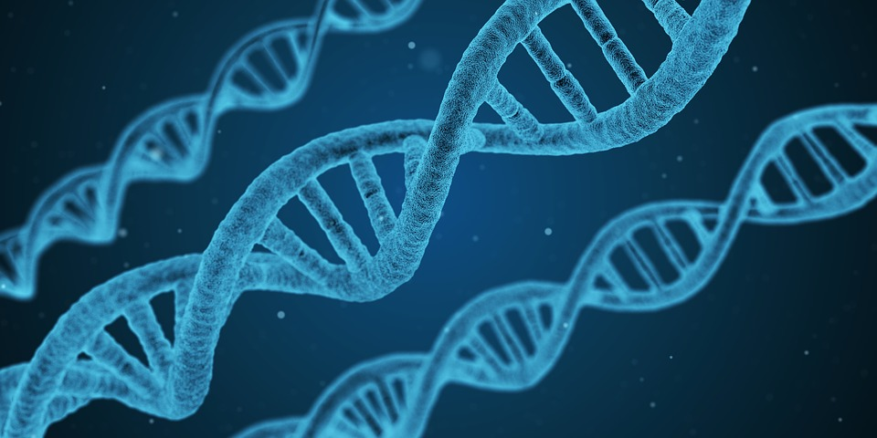 Everything You Need to Know About Fetal Gene Therapy
